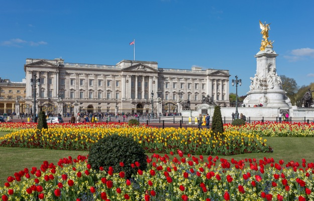 http://upload.wikimedia.org/wikipedia/commons/7/72/Buckingham_Palace_from_gardens,_London,_UK_-_Diliff.jpg