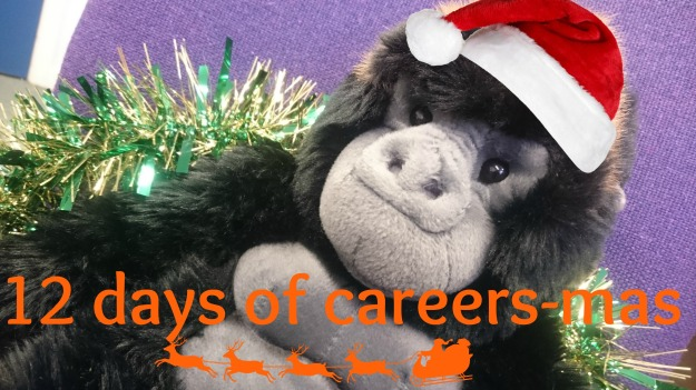 12-days-of-careers-mas